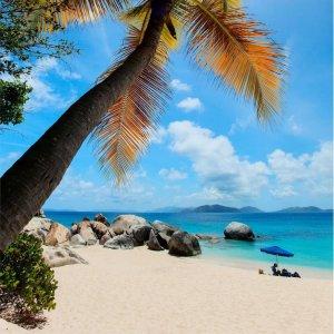 Air Wisp Island Breeze