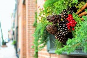 Mistletoe Holiday Fragrancejpg